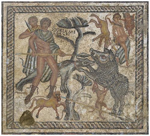 foramen_mosaico
