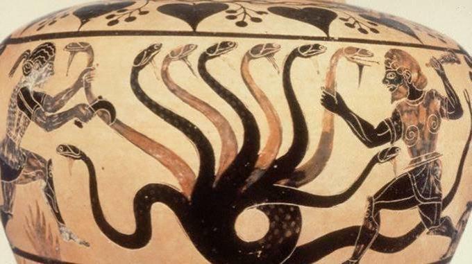 hidra-madrid